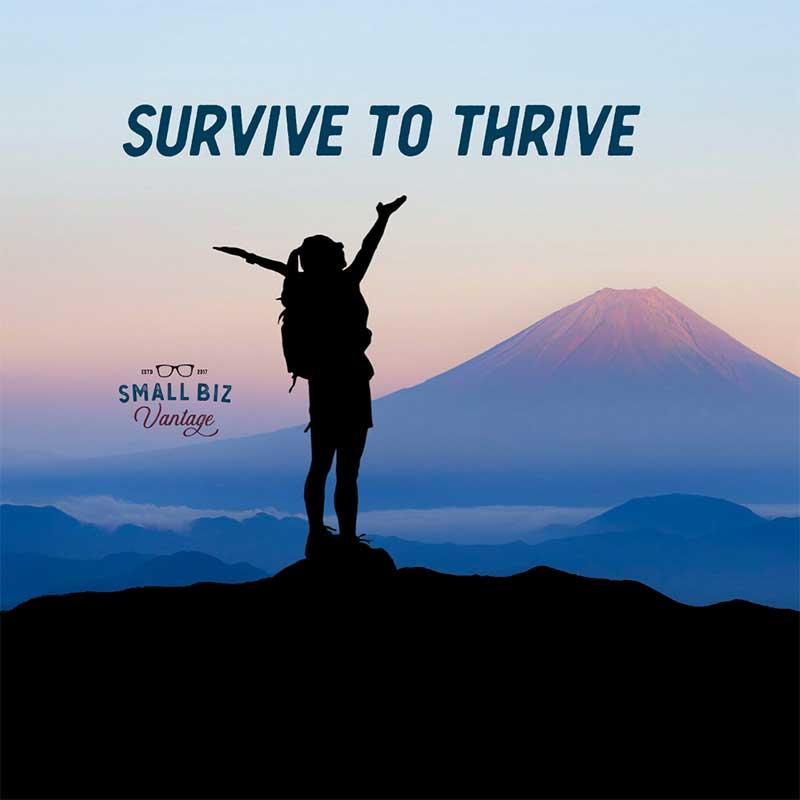 Small Biz Vantage - Survive to Thrive